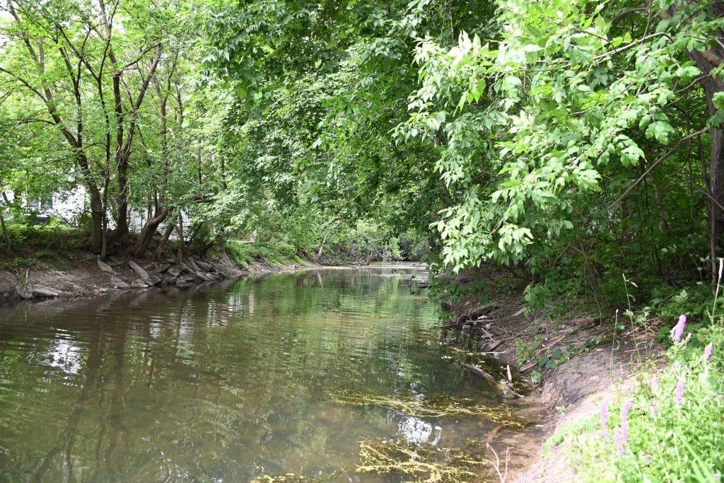 Ruisseau Hazen
